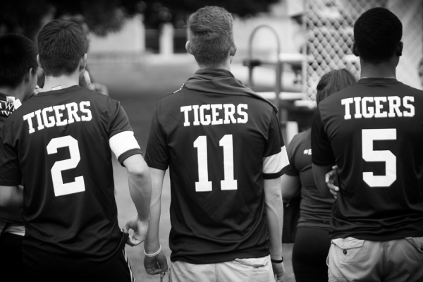 IW tigers slider