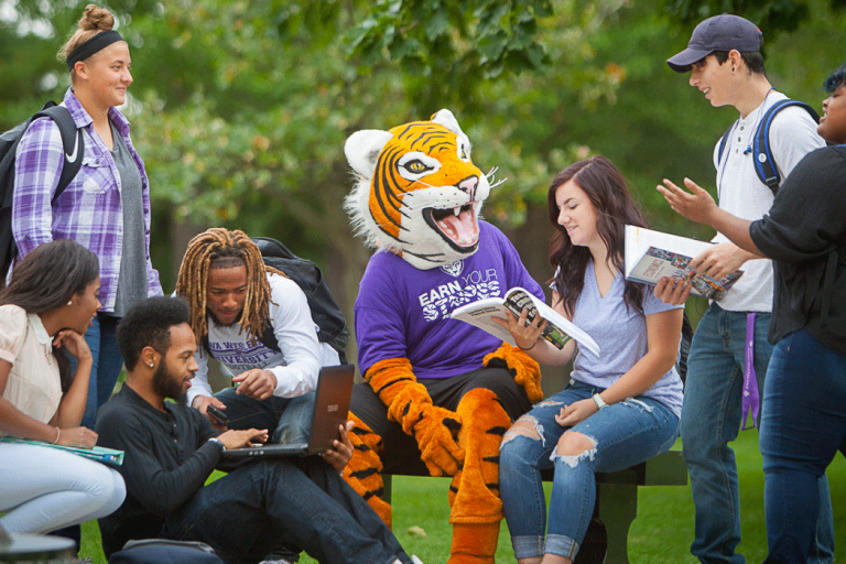 IW students studying on campus